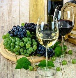 Wine Industry Image